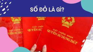 So-do-la-gi.png